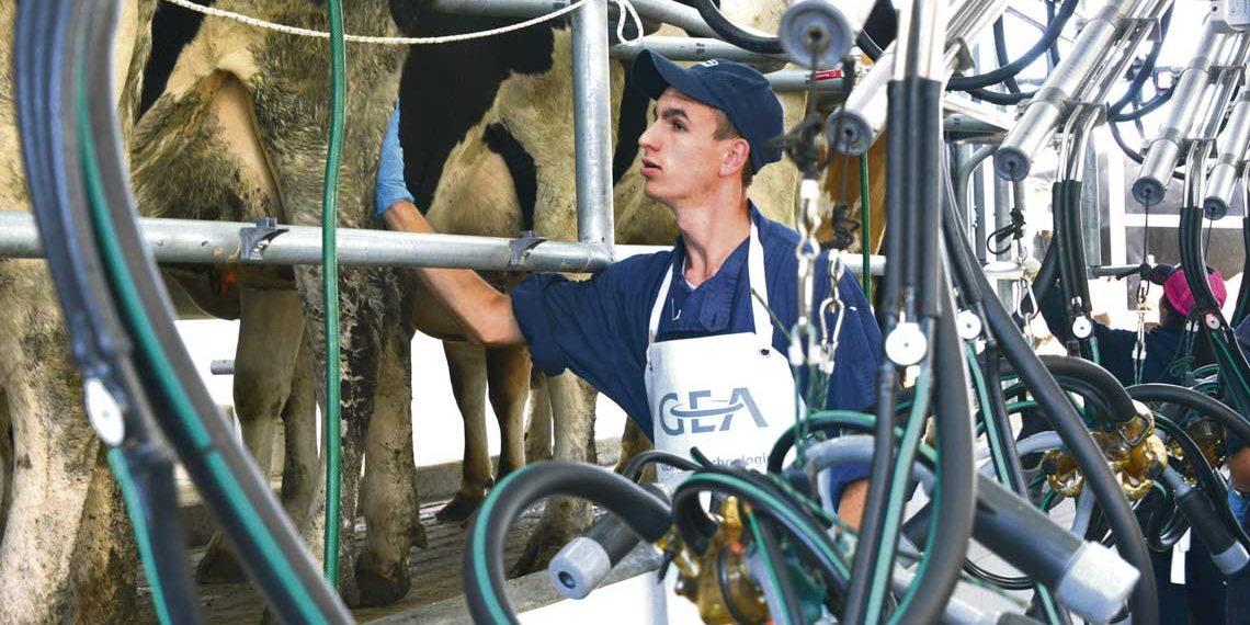 """""""La falta de leche para algunas industrias es un tema crítico"""""""